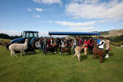 A fun day out for all the family at Agrodome Rotorua