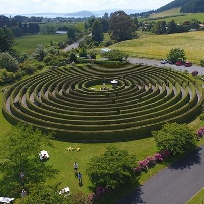 Ariel-photo-Rotorua-Hedge-maze