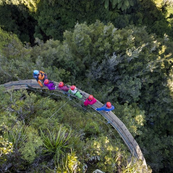 A small group of adventurers walking along a clifftop walk way through native NZ bush