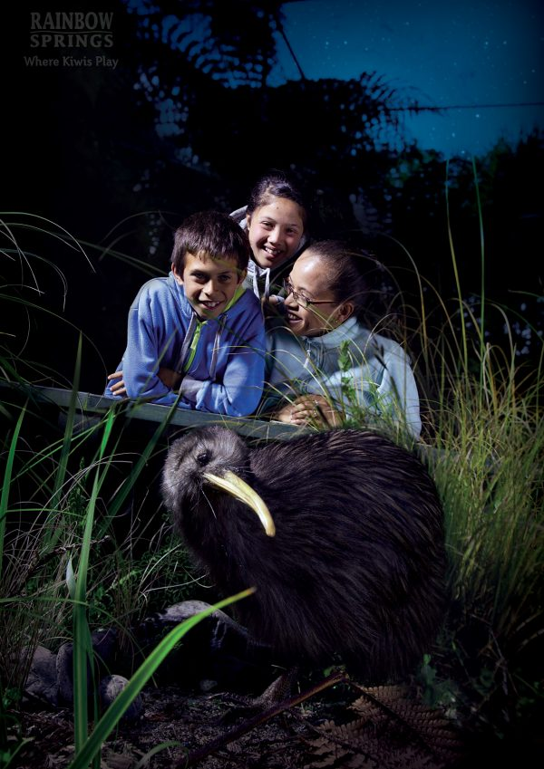 A treat for all the family at the kiwi Encounter at Rainbow Springs - Book Online