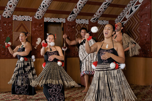 Te Puia Guided Tour & Cultural Performance