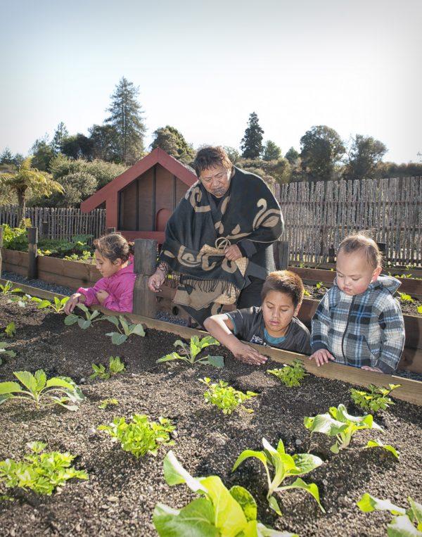 Experience a living Maori village at Whakarewarewa